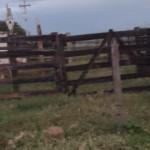 Fazenda Cercado2