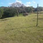 Fazenda Pasto